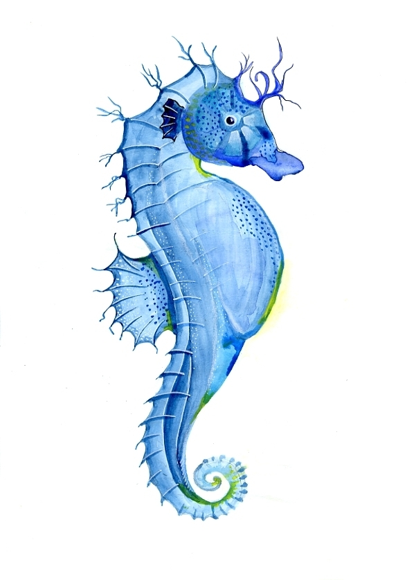 Seahorse water color by Janet Plantinga