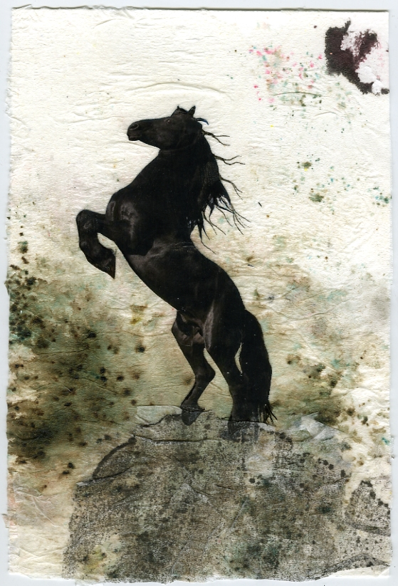 mixed-media-horse-on-rock-by-janet-plantinga